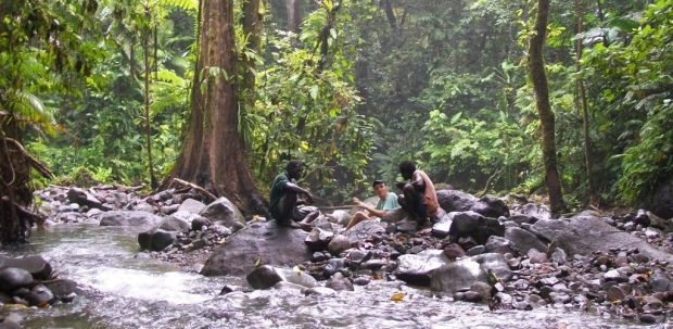 Barekasi Rainforest Reserve ecotourism for income generation