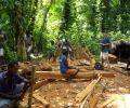 Sustainable Sawmilling