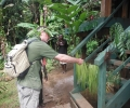 Barekasi Rainforest Lodge official opened